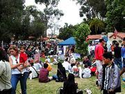 ethnic fair